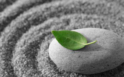 Workshop Meditatie