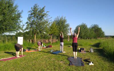 Yoga in de natuur in juli